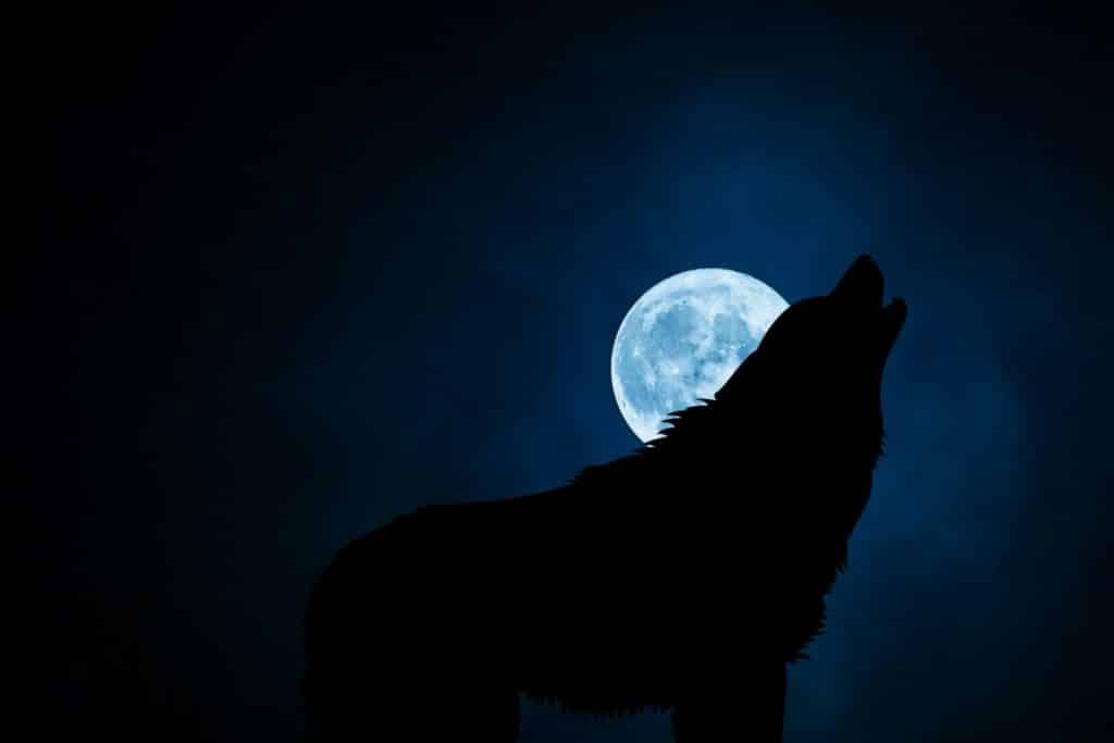 Full moon names by the Native Americans