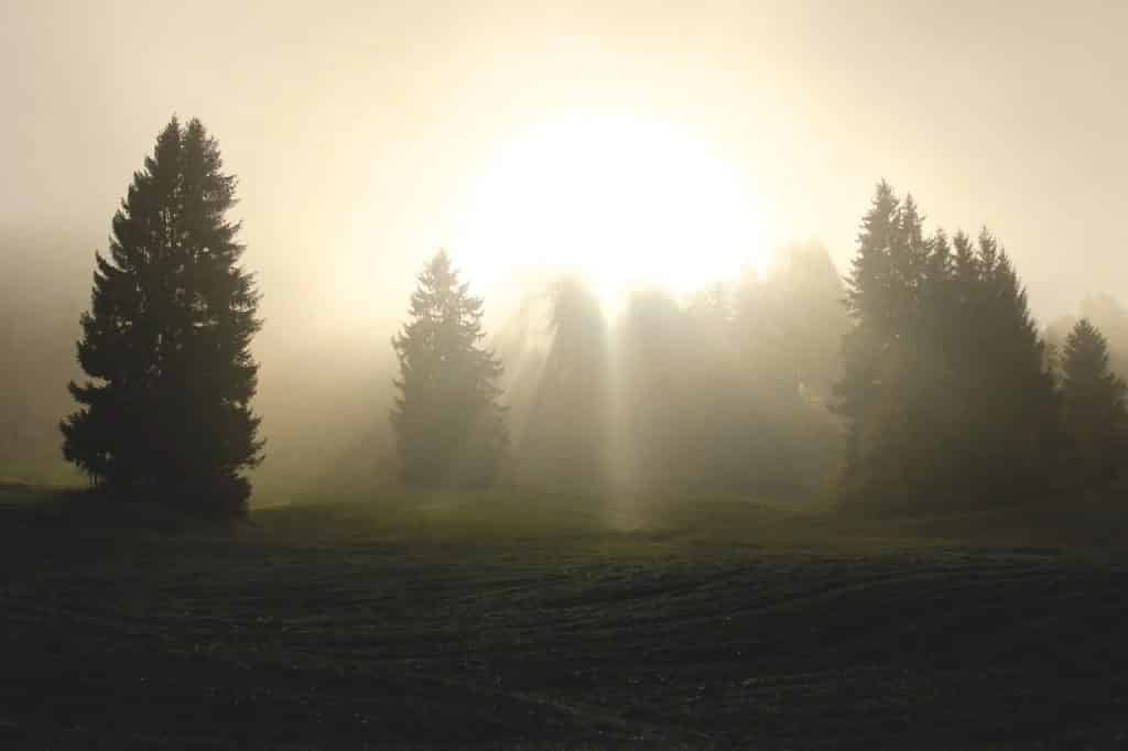Why should we know about spiritual light